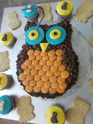 A wonderful owl cake made by mum at Eastnor Pottery birthday party