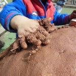 Clay oven built at washwood Heath Nursery School in Birmingham