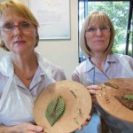 Creative collaborations with BMI Healthcare and Eastnor Pottery