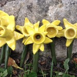 Family make ceramic Daffodils at Eastnor Pottery in memory of beloved family member