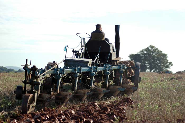 Old Caterpillar Tractor Ploughing with Ease