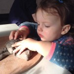 twin18 month old enjoys exploring clay at Eastnor Pottery
