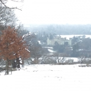 eastnor deer park and eastnor castle in the snow