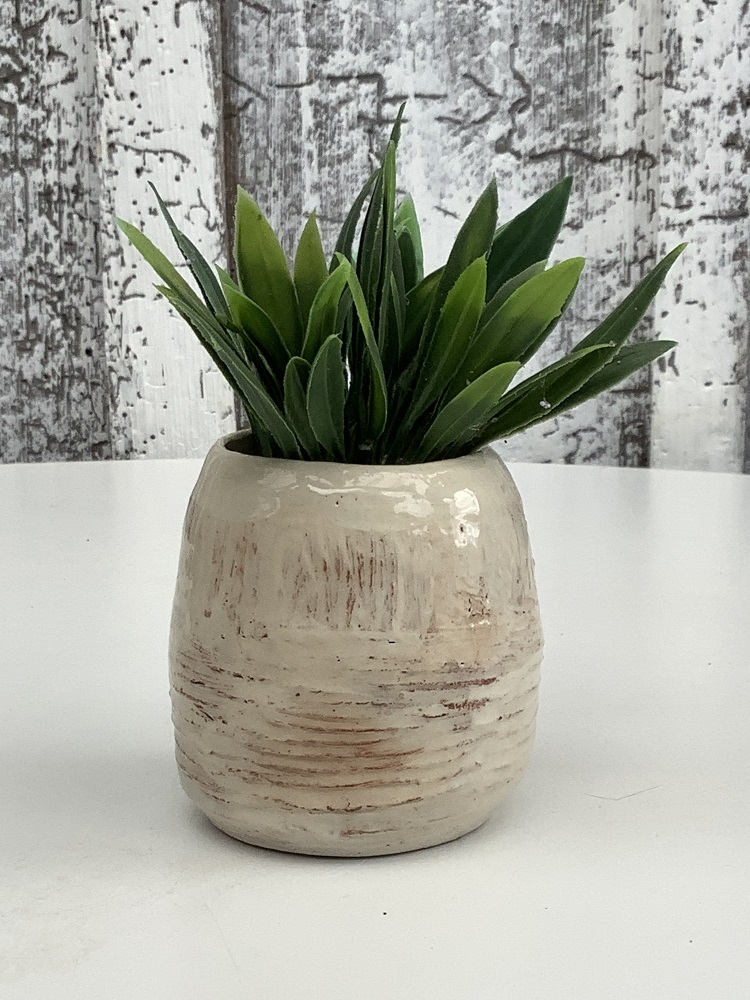 small pot painted white with plant inside
